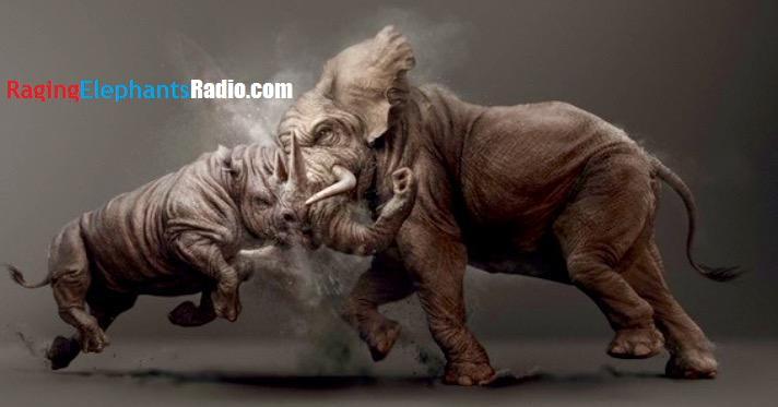 raging-elephant-fighting-rhino