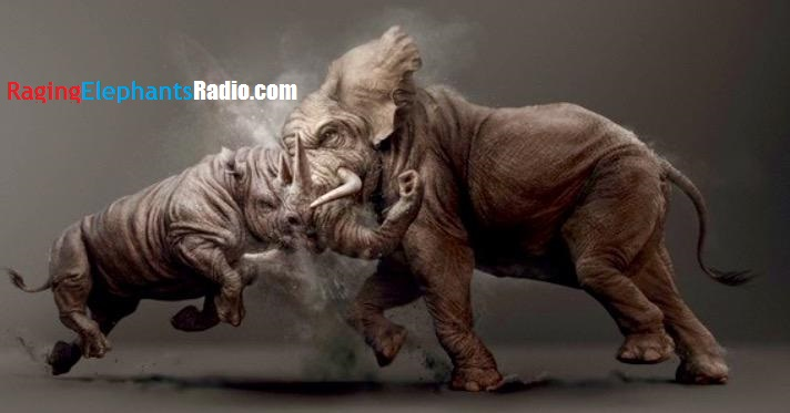 raging-elephant-fighting-rhino