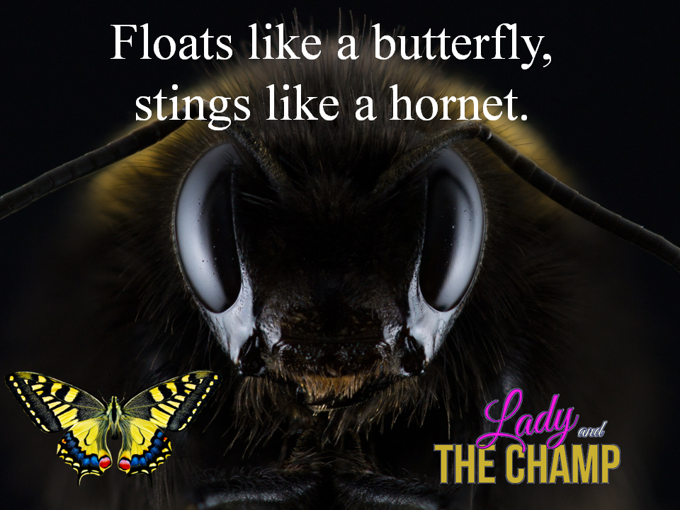 Floats like a butterfly and stings like a hornet - Lady and The Champ Show